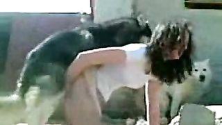 Brunette hottie acquires screwed by her pet Husky