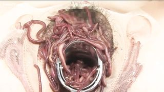 Extreme masturbation with worms