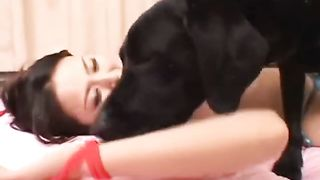 Asian playgirl licked by a dark dog
