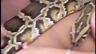 Live Anaconda Action