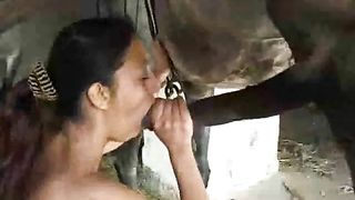 Thirsty whore eating wang of horse