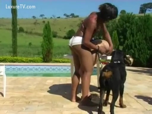 Dog joins in on sex