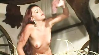 Slutty redhead bonks this horse penis and sucks until it squirts