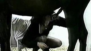 Vintage dilettante horse white wife bonks her stud-horse
