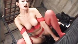 Horny Asian white wife engulfing and fucking her panting dog