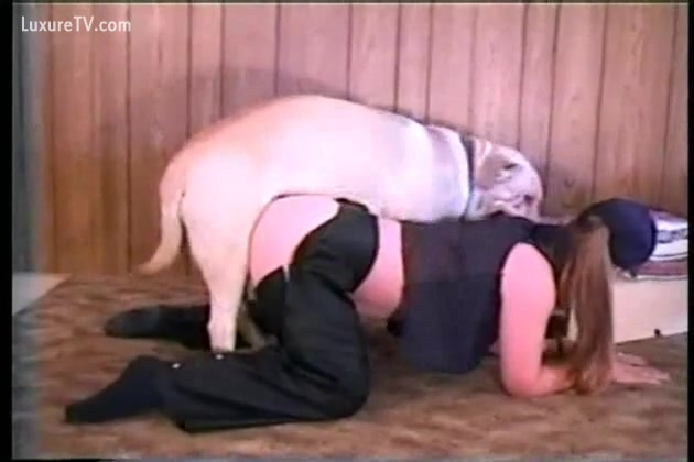 Chubby wench bows over to take dogs hard dick - XXX FemeFun