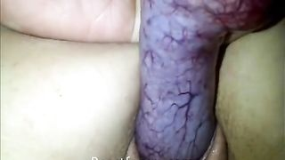 Cock with many veins is drilling pussy