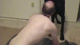 Man desires to fuck his dog