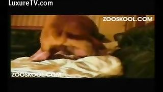 Horny wench is charming zoofiliac
