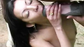 A Girl Sucks the Cock of Horse