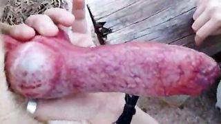 Teen Girl Swallowing a Dog's Cum