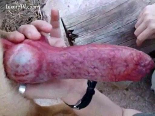 Taste of pussy cum