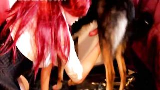 Bodacious brunette hair rookie in knee high socks getting anal drilled by a dog