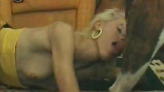 Lovely golden-haired enjoys giving BJ to her dog in the living room