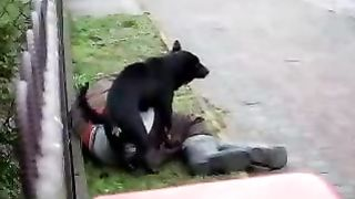 Drunk homeless chap is getting gangbanged by a dark dog in the street