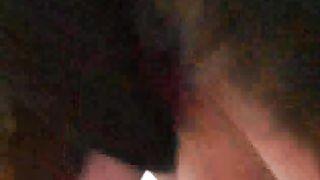 Black rottweiler enjoys wild fucking its hot female-dom