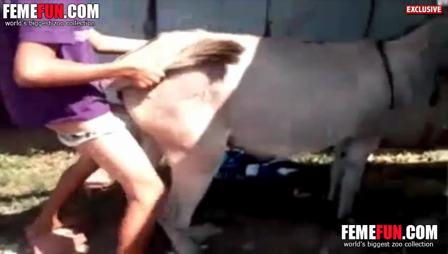 Girl sex with donkey video