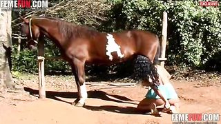 [XXX Stunning farm beastiality] action with a big brown horse and a zoophile