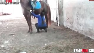[ Stolen Private Zoo Sex ] Happy wife pleases hubby by blowing their new horse  in front of husband
