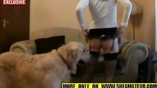 [ Dog Sex XXX Videos ] Housewife gets tremendous excitement by getting her twat screwed by her dog