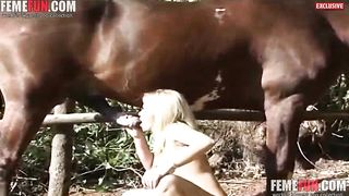 Horny girl swallows horse cum in impressive zoophilia home experience