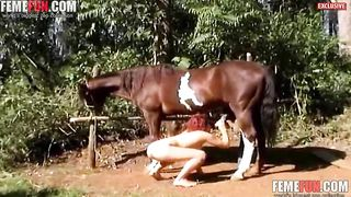 Horse cums on girl after a very hot zoophilia hardcore in amateur scenes