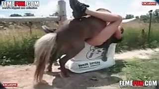 Guy fucks horse in crazy zoo scenes and in the end cums on its tail