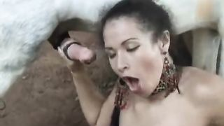 [ Horse mounts woman ] Horse cums on her in extra hot zoophilia XXX video