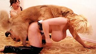Filthy mature big-breasted slut getting banged by a dog in this exciting animal fuck movie