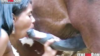 Latina teen enjoys sex with a horse stuffs her horny mouth with a really giant cock