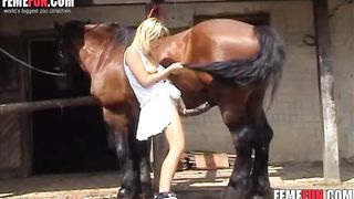 Young slut shows off boobs to a horse and makes the animal starve for her wet pussy