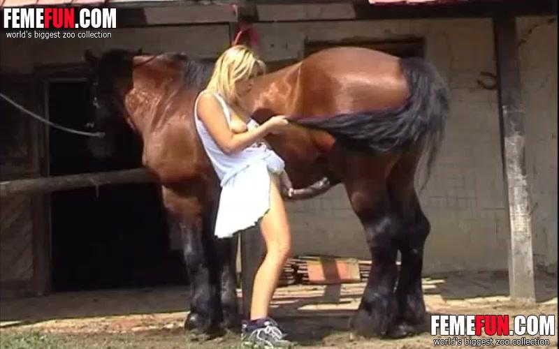 Pferde sex spiele