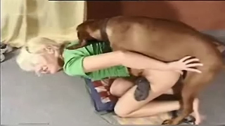 Brown dog and amateur blonde perform XXX copulation in doggystyle