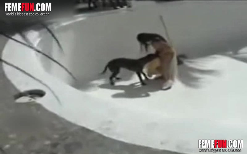 Animal Sex Wife Caught Fucking a Dog On a Hidden Cam Animal Sex