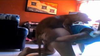 [ Amateur Beastiality Movie ] Big dog pounding horny teen