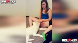 Masturbation and lick by the white dog give the chick XXX pleasure